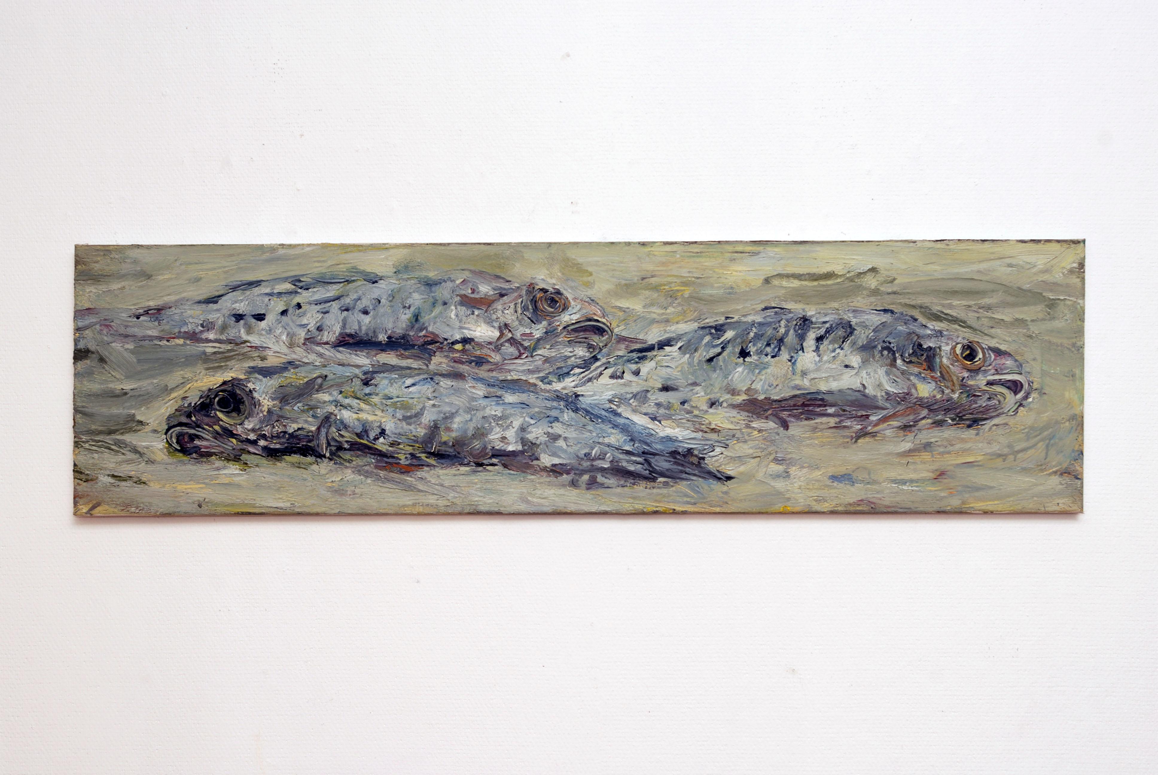 marc-mulders-vissen