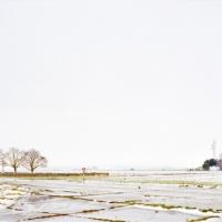 Haynecourt, 61x122 cm, 2008
