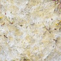 Melissant mites, 90x215 cm, 2010
