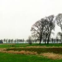 Het buitendijks, 110x265 cm, 2011