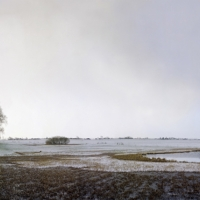De polder Dronthen, 51x132 cm, 2011
