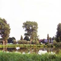 Kolk langs de Hogeweg, 51x132 cm, 2011