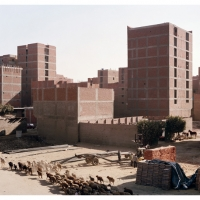 Ringroad, Caïro, 65x81 of 125x155 cm,2009