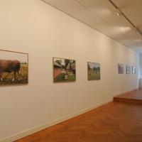 Exhibition Animalia