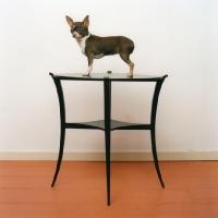 Lonneke, 70x70 cm,1999