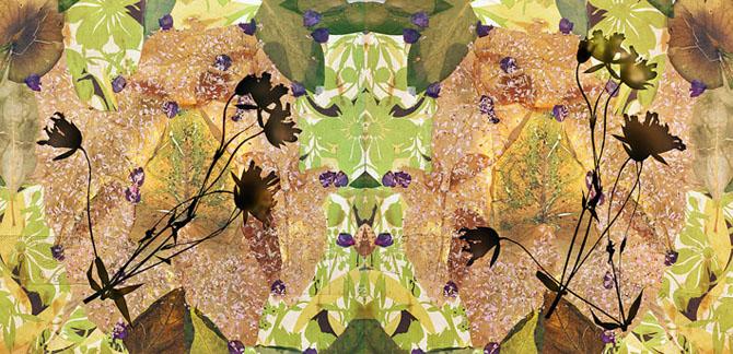 Somnambule 4, 120x156 cm or 92x120 cm or 60x78 cm, 2015
