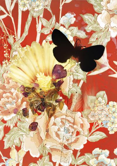 butterflies 11, 119x159 cm,2011