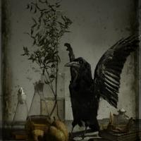 La myrthe et le corbeau, 102x72 cm, 2016