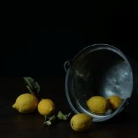 Citrons, 65x82 cm, 2013